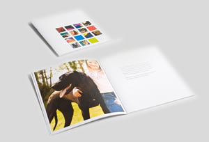 Southwestern Printing Corporate Identity Sample